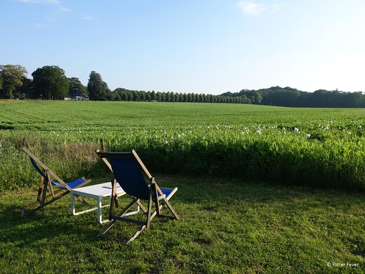 Relaxen met uitzicht over bloemenveld bij Holdeurn
