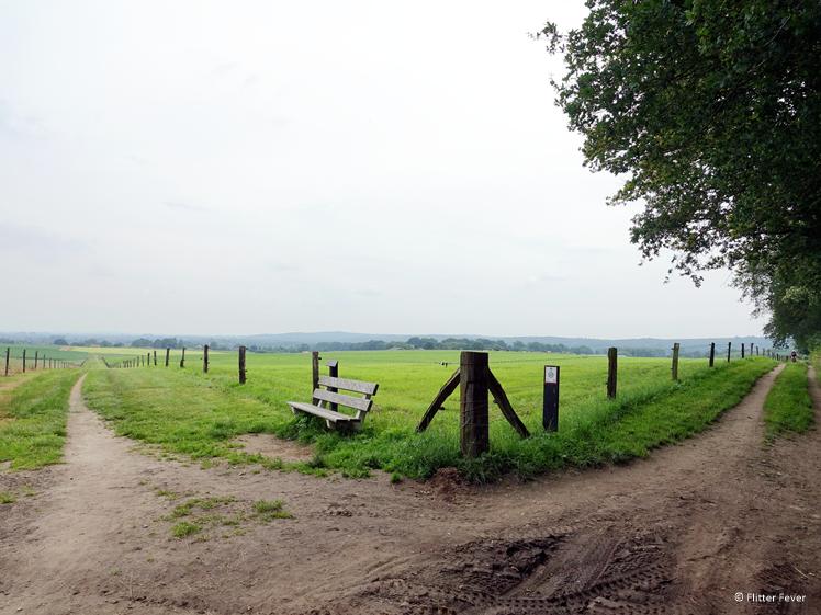 Wandelen bovenop de Sint Jansberg Groesbeek