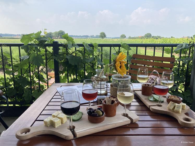 Wijngaarden in Groesbeek bezoeken is leuk tijdens de Open Wijngaard Dagen