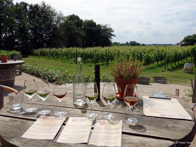 Wijnproeverij bij het Nederlands Wijnbouw Centrum in Groesbeek